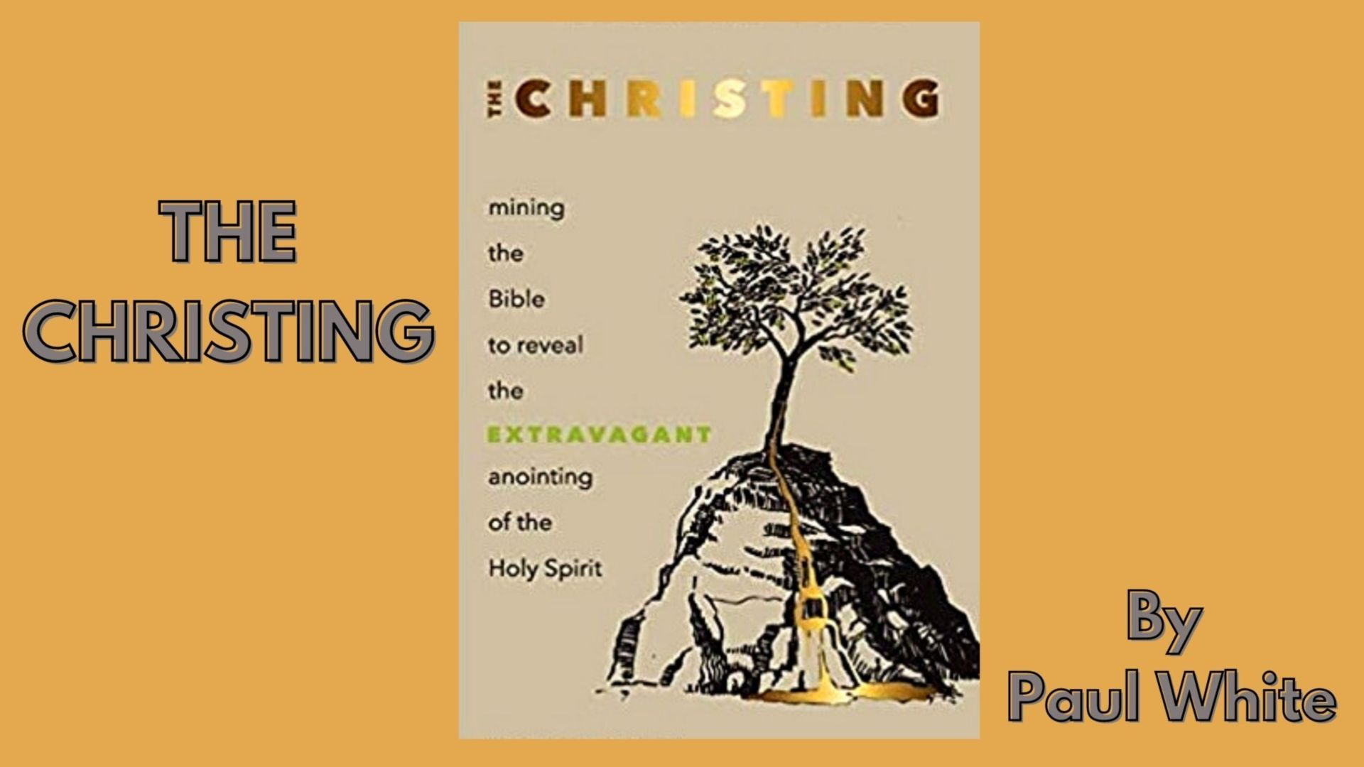 The Christing by Paul White - a new book from Authentic Media